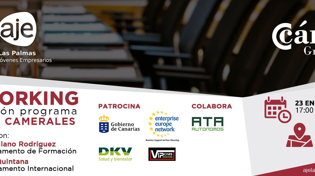 Networking Presentación servicios camerales de Cámara de Comercio de Gran Canaria